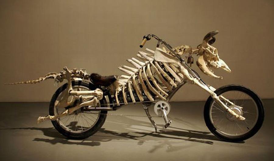 wierd-bikes-list.jpg