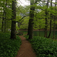 Gyalog a Biogradi-tó körül