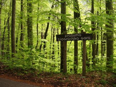 Biogradi Nemzeti Park