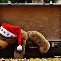 Várjuk a karácsonyi szünetet