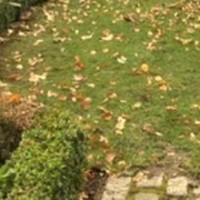 Az őszi fűmaggal füvesítés sikerének 4 összetevője