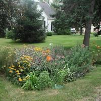 Öt tipp a kerti vízspóroláshoz!