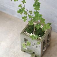 Elfoglaltságok otthonra: házi készítésű virágedények