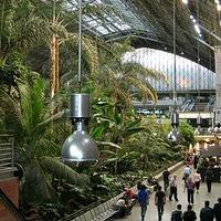 Madrid dzsungelszerű pályaudvara