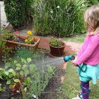 Megüti a növényeket is a hőguta?