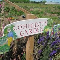 Közösségi kertek kritikája