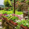Mediterrán kertfantáziák