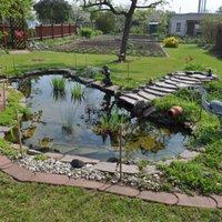 Hogyan építsünk kerti tavat?
