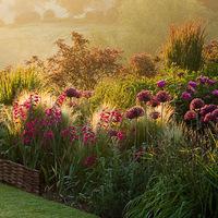 Gyönyörködj reggeltől estig a kertedben!