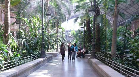 A központi trópusi kert 4000 nm területet foglal el