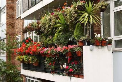 balcony-garden-23.jpg