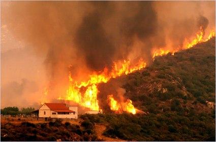 Forest_fires_greece.JPG