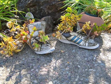 running-shoe-flower-pots.jpg