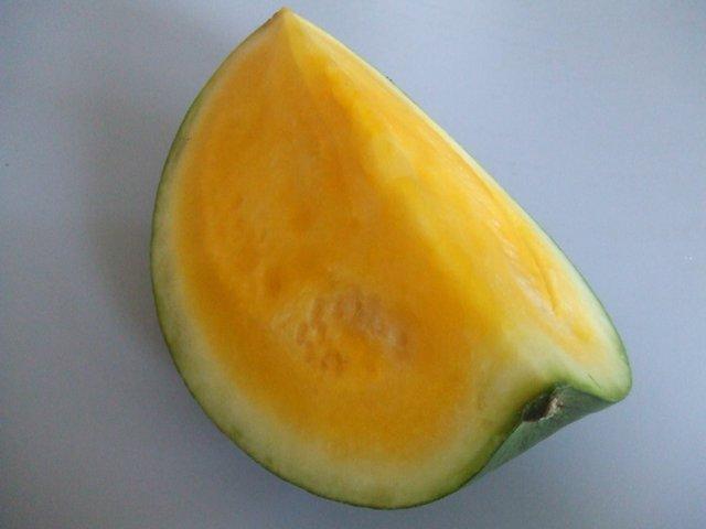 citrullus_lanatus.jpg