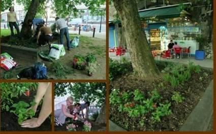 guerilla_gardening7,jpg.jpg