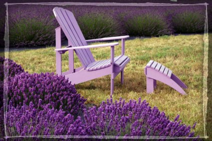chair-and-lavender.jpg