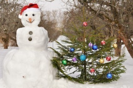 8090738-snowman-with-christmas-tree-on-winter-garden.jpg
