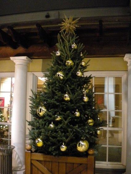 Christmas Tree at the entrance of DSBG.jpg
