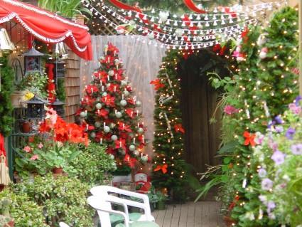 Christmas-Garden-Decoration-Ideas-01-Deck-with-Christmas-Tree-800x600.jpg
