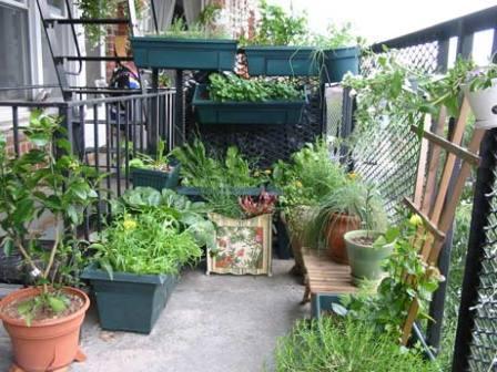 condo_garden_balcony.jpg
