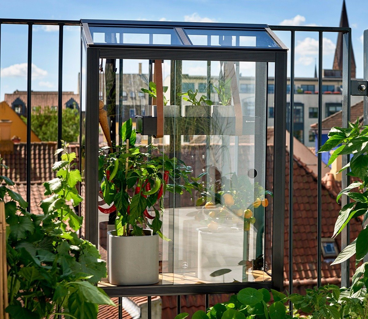 juliana-balcony-greenhouse-eb61b2b037c2fe304d2a28be749e131d_original.jpg
