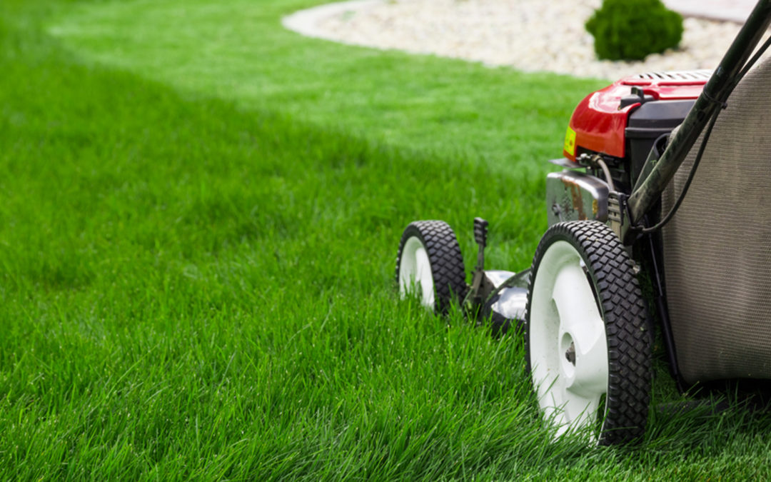 lawn-care-service-1080x675.jpg