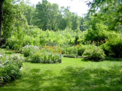 natural-garden-ideas-9.jpg