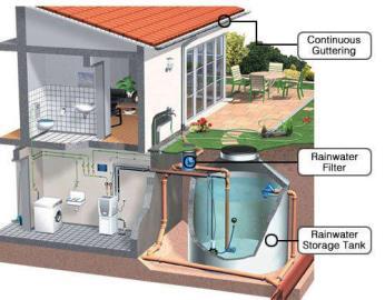 rainwater-harvesting-system.jpg