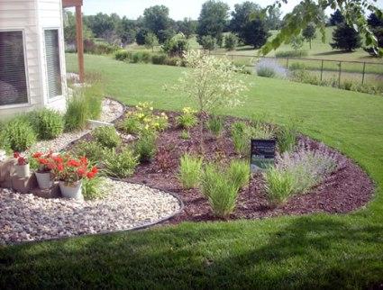 200904-rain-garden.jpg