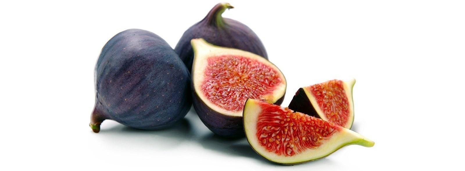common-fig-seeds-ficus-carica.jpg