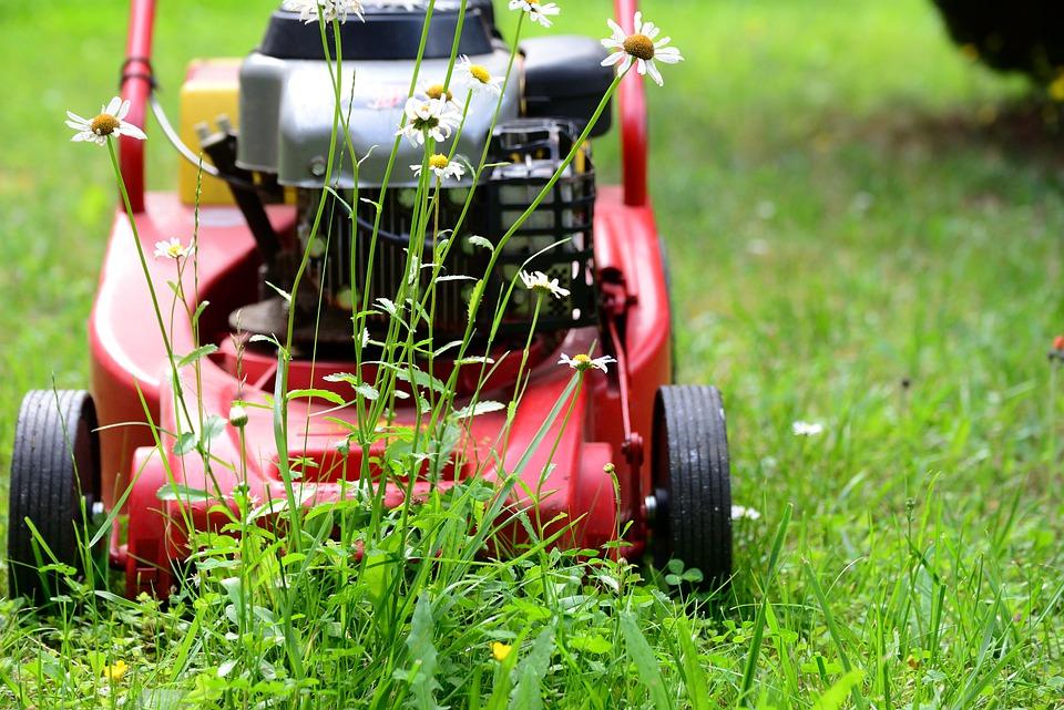lawn-mower-5329533_960_720.jpg