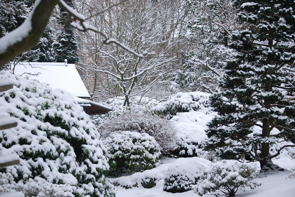 winter-2805910_960_720.jpg