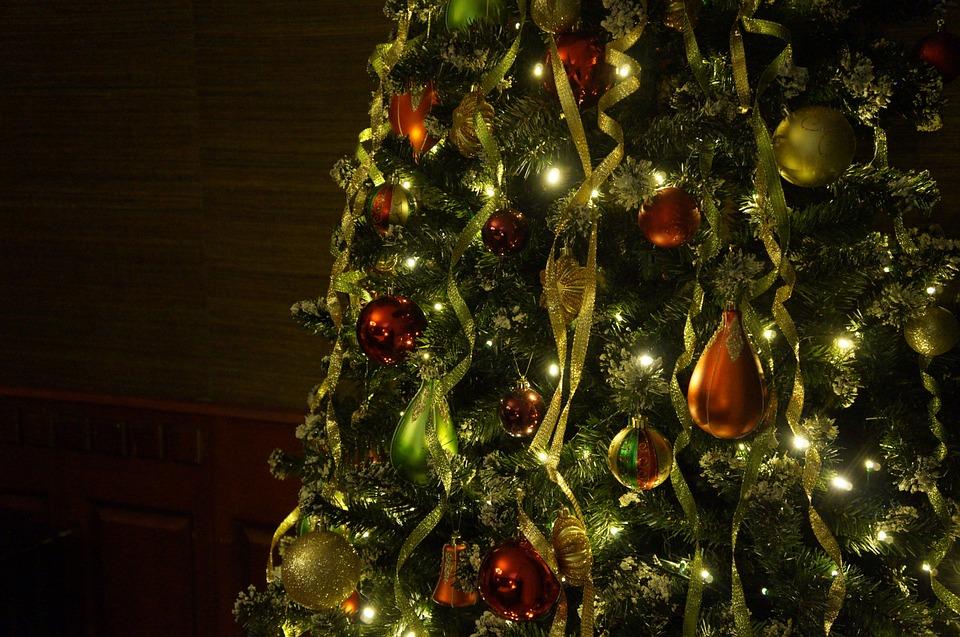 christmas-tree-708003_960_720.jpg