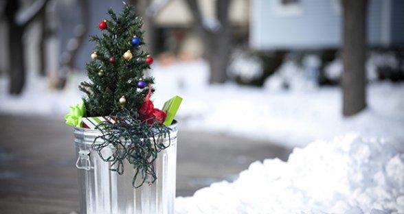 unusual-christmas-trees_uses.jpg
