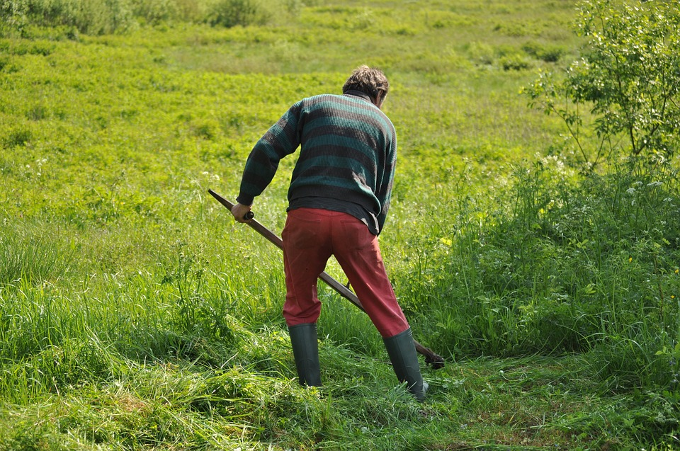 mowing-1532931_960_720.jpg