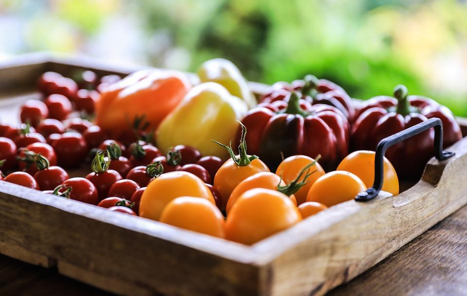 vegetables-3606385_960_720.jpg