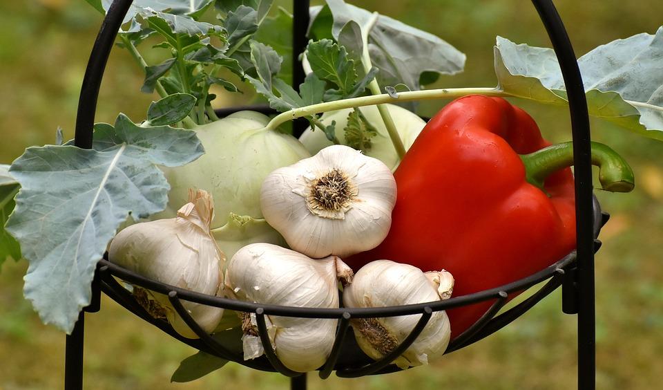 vegetables-3483066_960_720.jpg