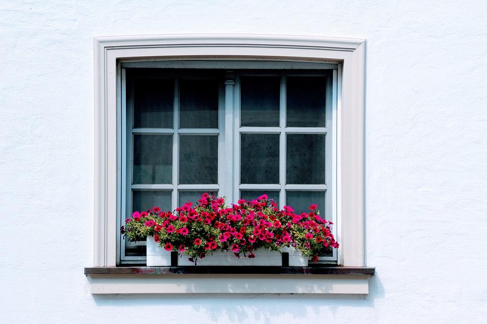 window-2651303_960_720.jpg