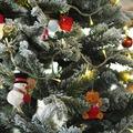 Századszor: Vágott vagy földlabdás fenyőt vásároljunk karácsonyra?