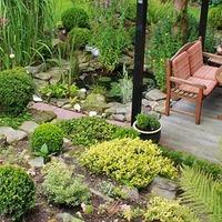 5 dolog, amit most érdemes megcsinálnod a kertedben