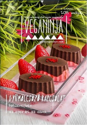 veganinja_2015_05_351x500.jpg