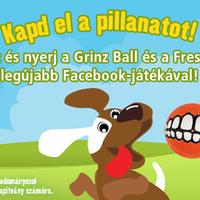 Vigyorgó kutyusok a Fressnapf Facebook-oldalán (x)