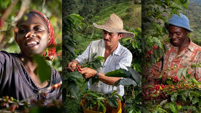 """A Nespresso bemutatja a """"Reviving Origins"""" programot, mellyel újraélesztették a kávétermelést Uganda, Zimbabwe és Kolumbia veszélyeztetett régióiban"""