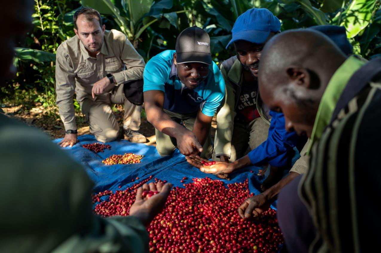 nespresso_zimbabwe_small2.JPG