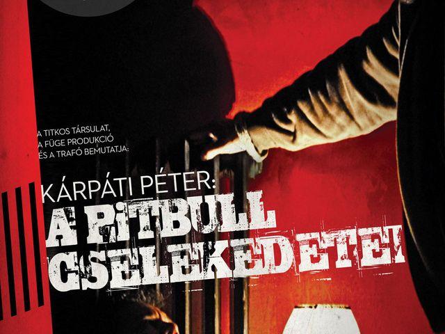 A Pitbull cselekedetei