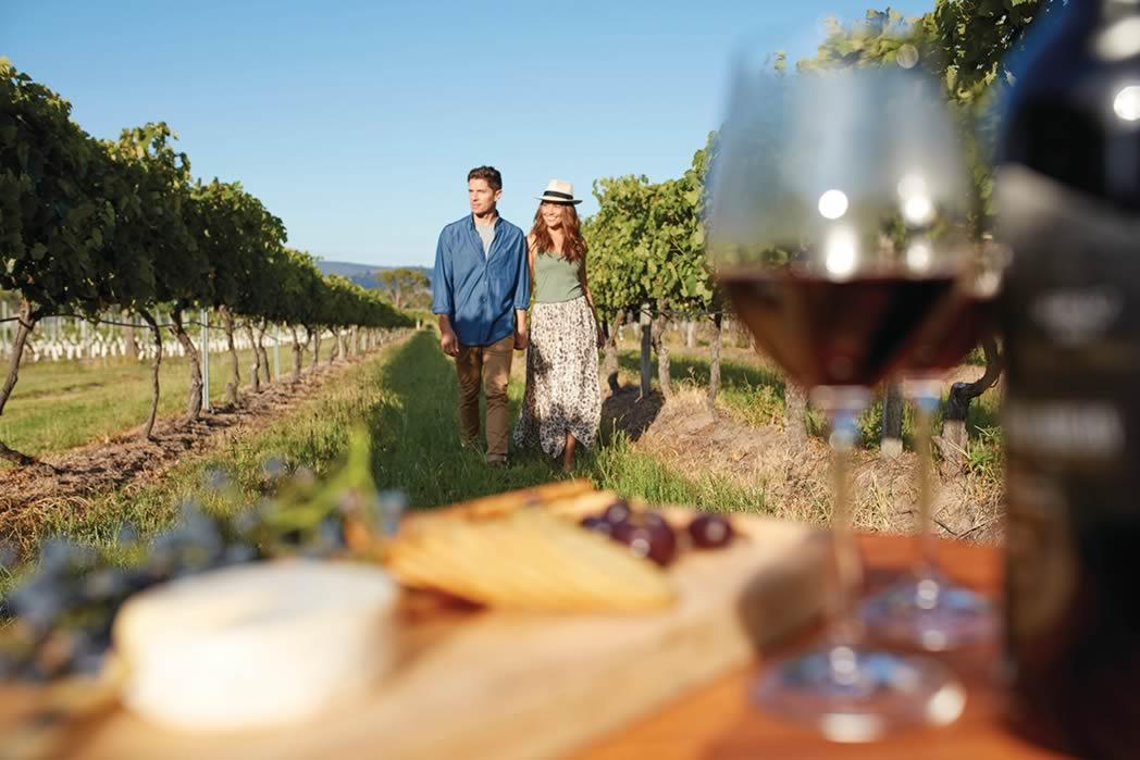 queenslands-best-wineries1.jpg