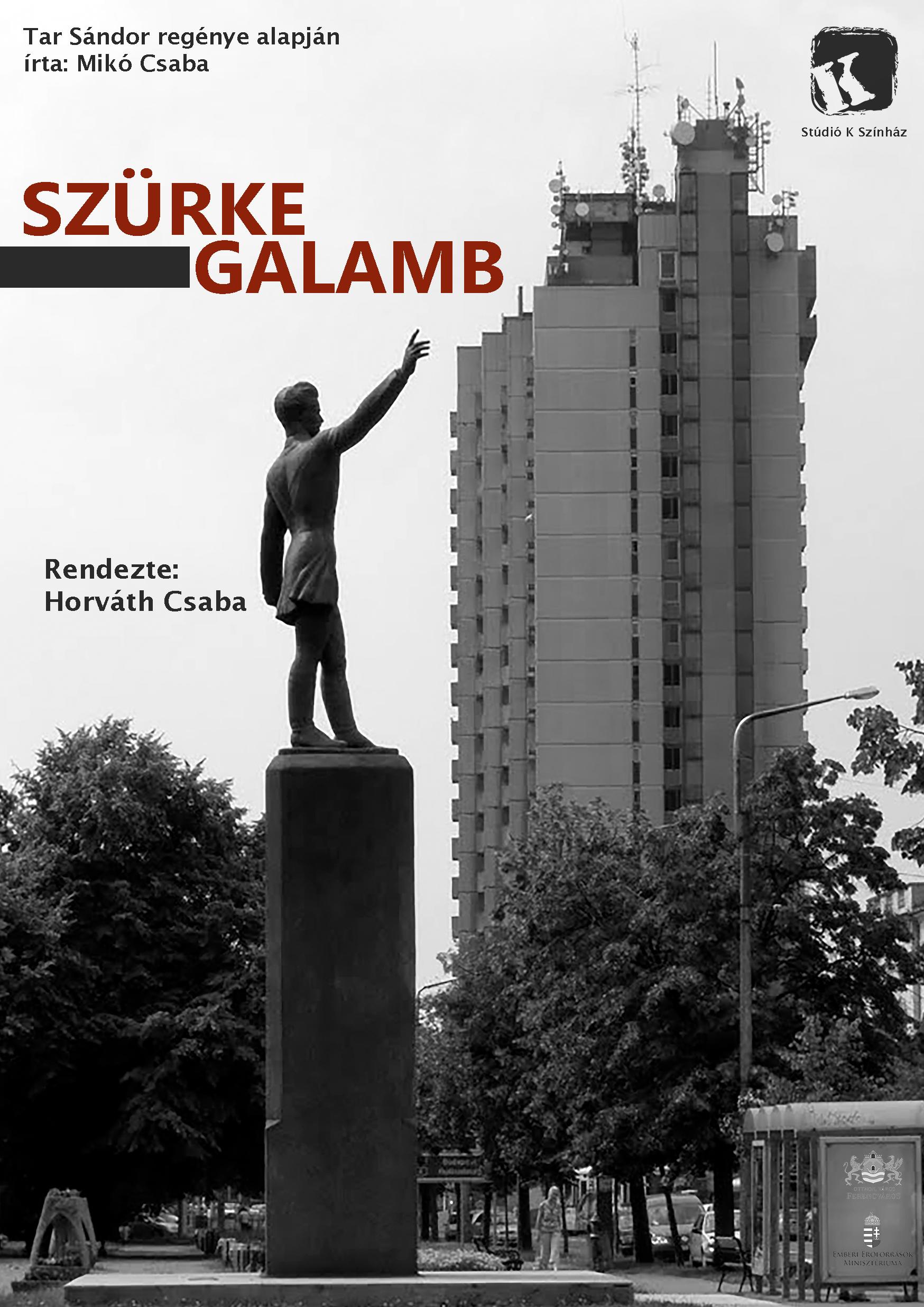 szurke-galamb_elolap_a5.jpg