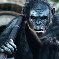 A majmok bolygója - Forradalom / Dawn of the Planet of the Apes (2014)