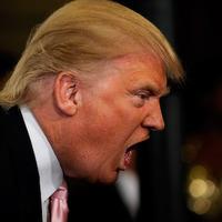 """""""Örülhetsz, hogy nem lőlek le"""" - elszabadultak az indulatok az USA-ban Trump megválasztása után"""