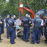 Szó szerint szét kellett szerelni a markolót a 100 éves fát védő Ligetvédő eltávolításához